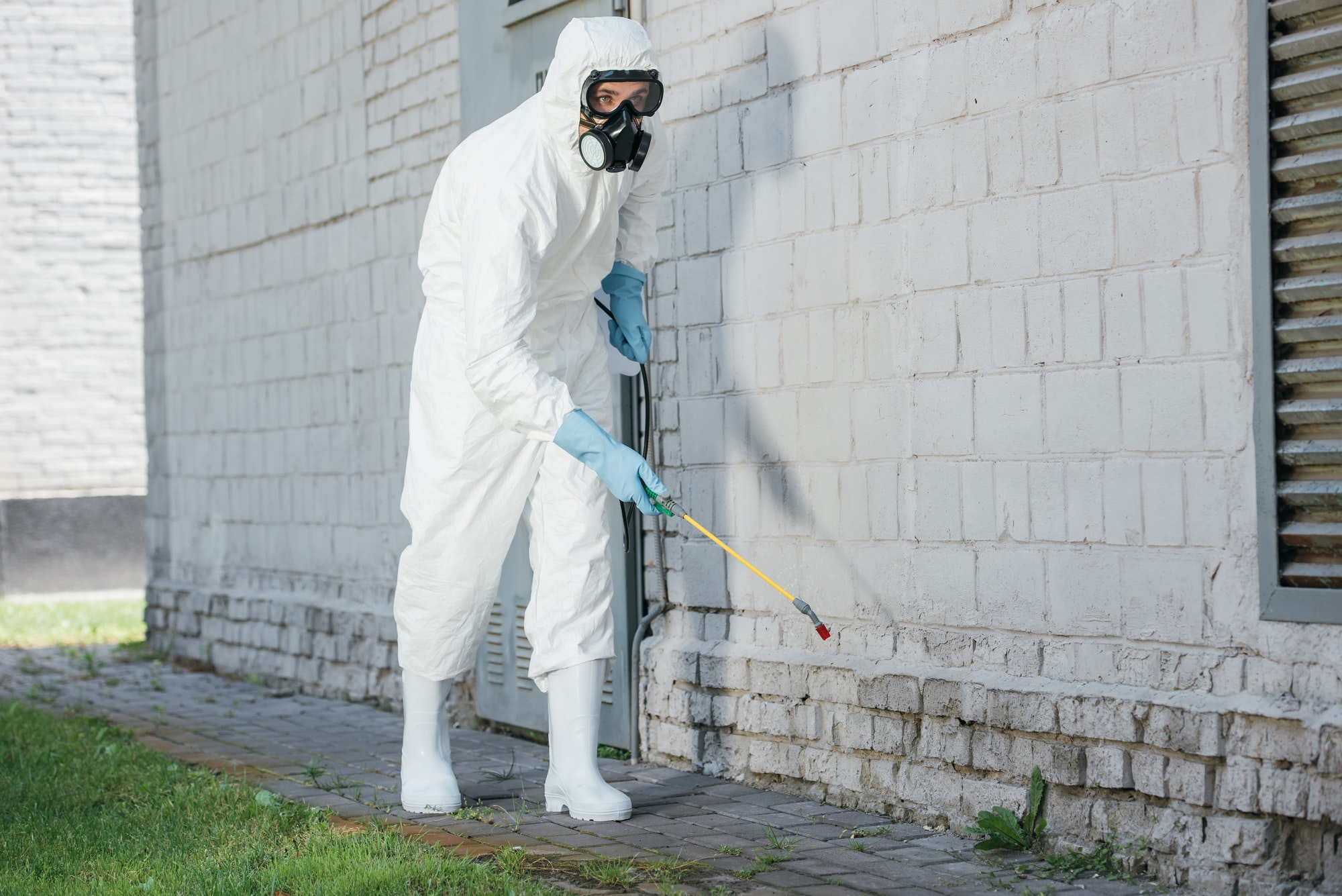 pest control worker spraying chemicals with sprayer on building wall